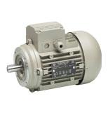 الکتروموتور سه فاز الکتروژن مدل 1500 دور 1.2hp B14-71fr